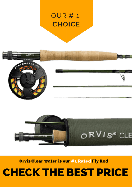 Best Fishing Rod for fly fishing